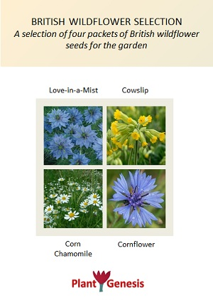 British Wildflower Selection / 4 packets of PlantGenesis Seeds