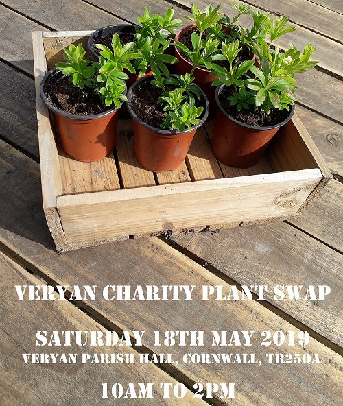 Veryan Charity Plant Swap 18 May 2019