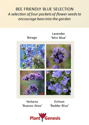 Bee Friendly Blue Selection / 4 packets of PlantGenesis Seeds